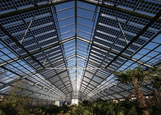 Nuevos Paneles Solares Para Invernadero